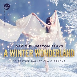 David Plumpton Plays A Winter Wonderland (Front)